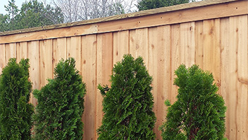 cap and trim wood fence